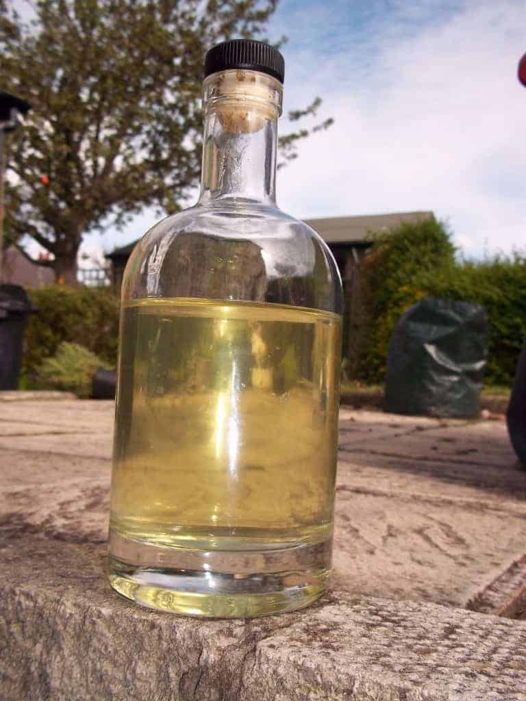 Chilli and Lime Gin: Adventures of the Gin Kind